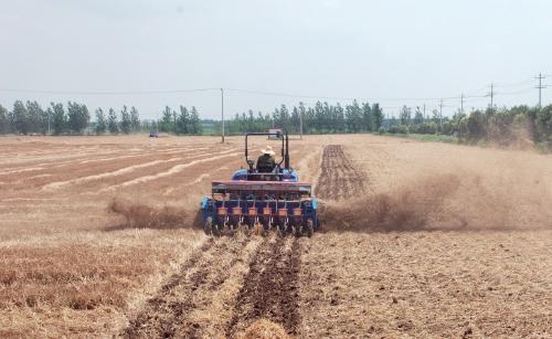 """""""一条龙""""解决麦茬大豆生产难题"""