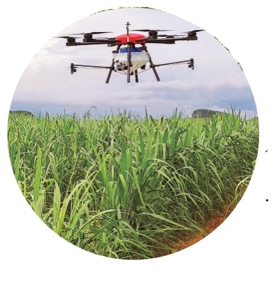 廣西現代特色農業發展再上新臺階