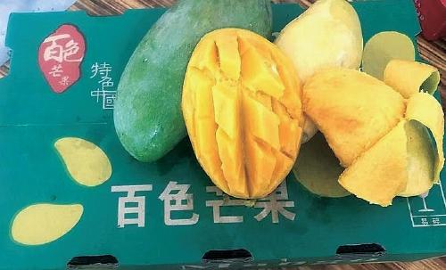 广西:实施国家地理标志农产品保护工程 为特色产业赋能增效