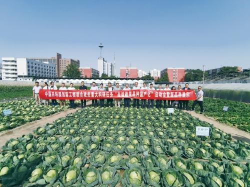 高端蔬菜品种国产化项目启动