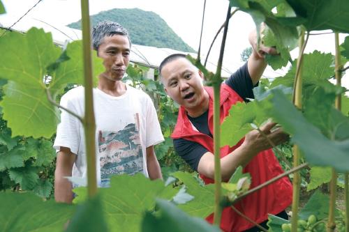青山绿水筑品质 科技支撑高效益