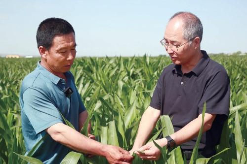 """打造""""种为先""""的农业科技版图"""